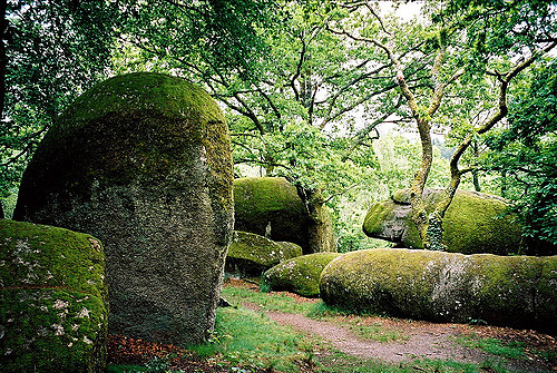 Jolis rochers dans les Monts du Blond en Haute Vienne